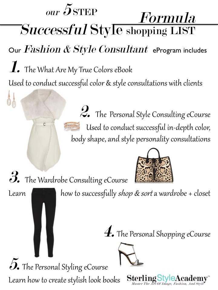 Sterling Style Academy 5 Step Successful Style Formula eCertification Program blog