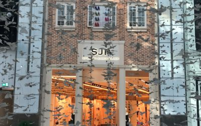 Dubai Mall | Sterling Style Academy