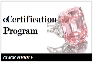 eCertification Program